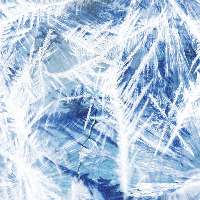 16_frozen_lr