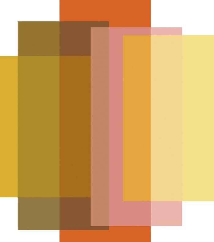 Blended 5 Colours Candy Orange – 310×350 -72dpi