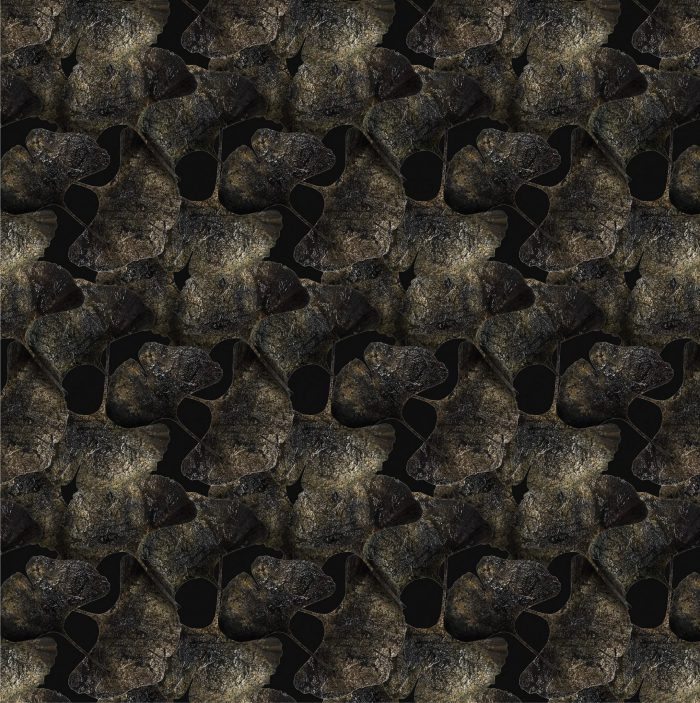 EdwardvanVliet_GinkoLeaf_Black_Broadloom_H-Res