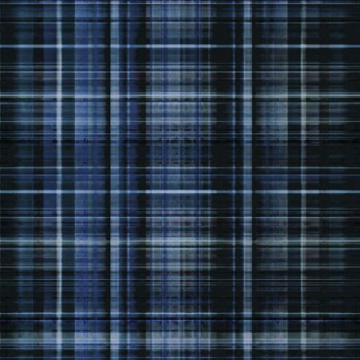 Blue Plaid Carpeting Carpet Vidalondon