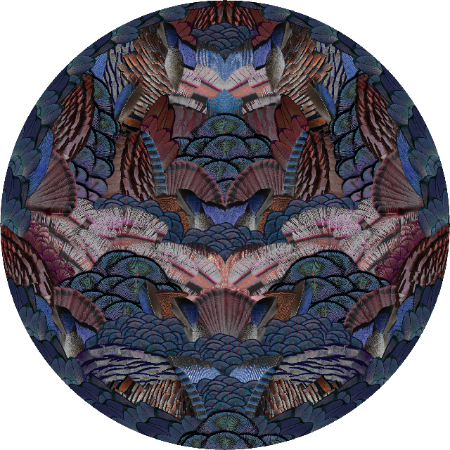 Web_Moooi Carpets Calligraphy Bird 2018