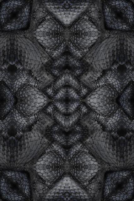 Web_Moooi Carpets Dwarf Rhino 2018
