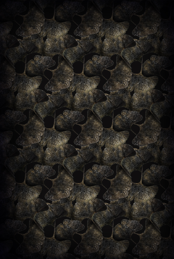 Ginko Leaf Black 200×300