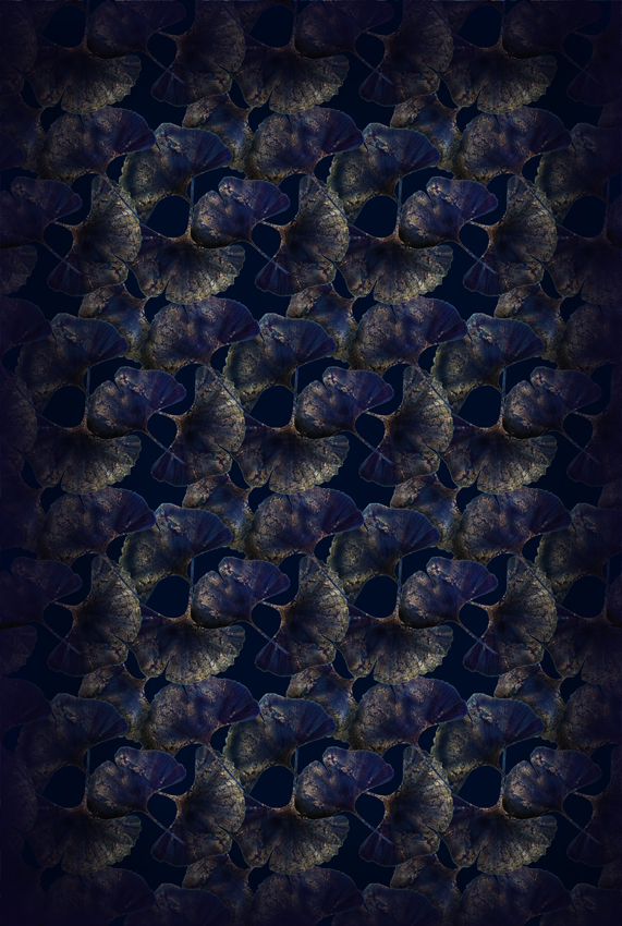 Ginko Leaf Blue 200×300.