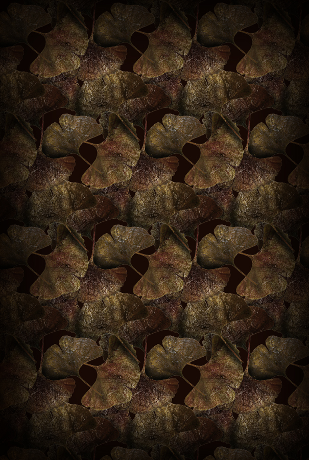 Ginko Leaf Rust 200×300.