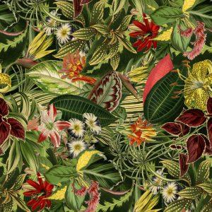 Herbarium of Extinct Plants